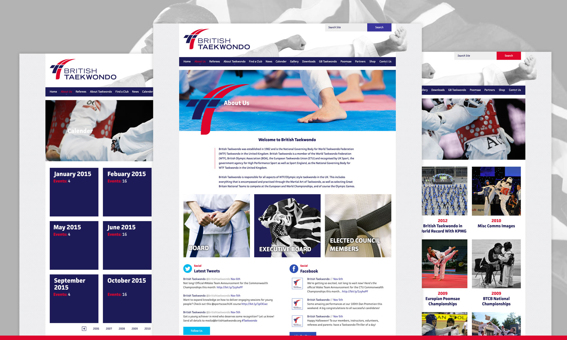 British Taekwondo Web Design